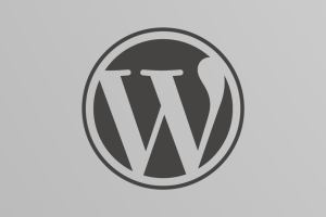 Skulblakas mit WordPress